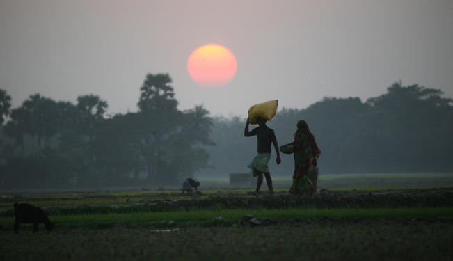 Tackling Energy Poverty in Rural India