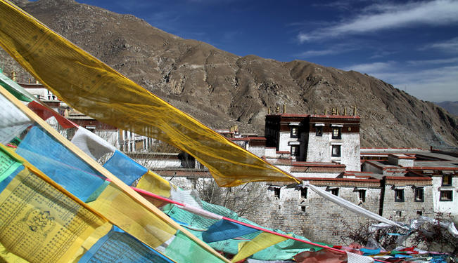 The Immortal Bodhi Tree: Tibet and the Chinese Occupation