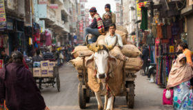 India's Got Beef With Beef