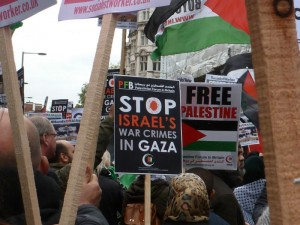 Palestinian supporters