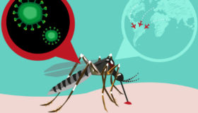 Is Zika Related to Climate Change?