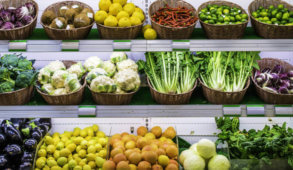 reducing food waste news, global food waste news, food waste in America news, hunger in America news, US food insecurity news, Latest Environmental news, Latest Climate change news, greenhouse emissions from food waste news, food waste initiatives news, ending world hunger news