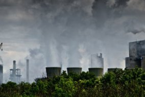 Environmental news, Environment, Climate change, global warming, COP 23, pollution, air pollution, insects, world news, international news