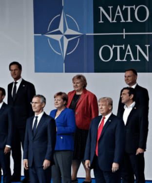 The American Dog in the NATO Fight