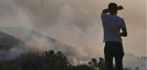 California wildfires, California wildfire damage, California climate change, California forest management, environment news, does climate change cause wildfires, global warming, Gavin Newsom California, California wildfire management, did utility companies cause California wildfires