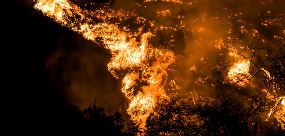 Wildfires, Climate change, Californian wildfires, California wildfires, Australian wildfires, Australian bushfires, Global warming, impact of climate change, climate change news, Climate change latest