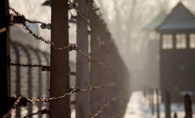 The Holocaust: A Synopsis