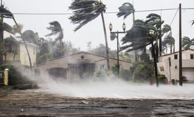 When COVID-19 and Hurricanes Collide