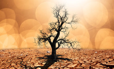 Climate Change: Insights From History
