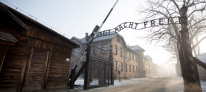Hans-Georg Betz, Centre for Analysis of the Radical Right, Robert Keith Packer Auschwitz, Robert Keith Packer Capitol, anti-Semitism US, attack on US Capitol, Nazi Germany, Holocaust Nazi Germany, Auschwitz Holocaust, Final Solution to the Jewish Question