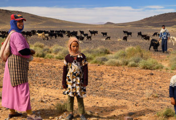 Pastoral Nomads in North Africa Consider In-Place Farming